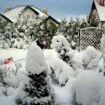 Drugie Boże Narodzenie z Tymkiem